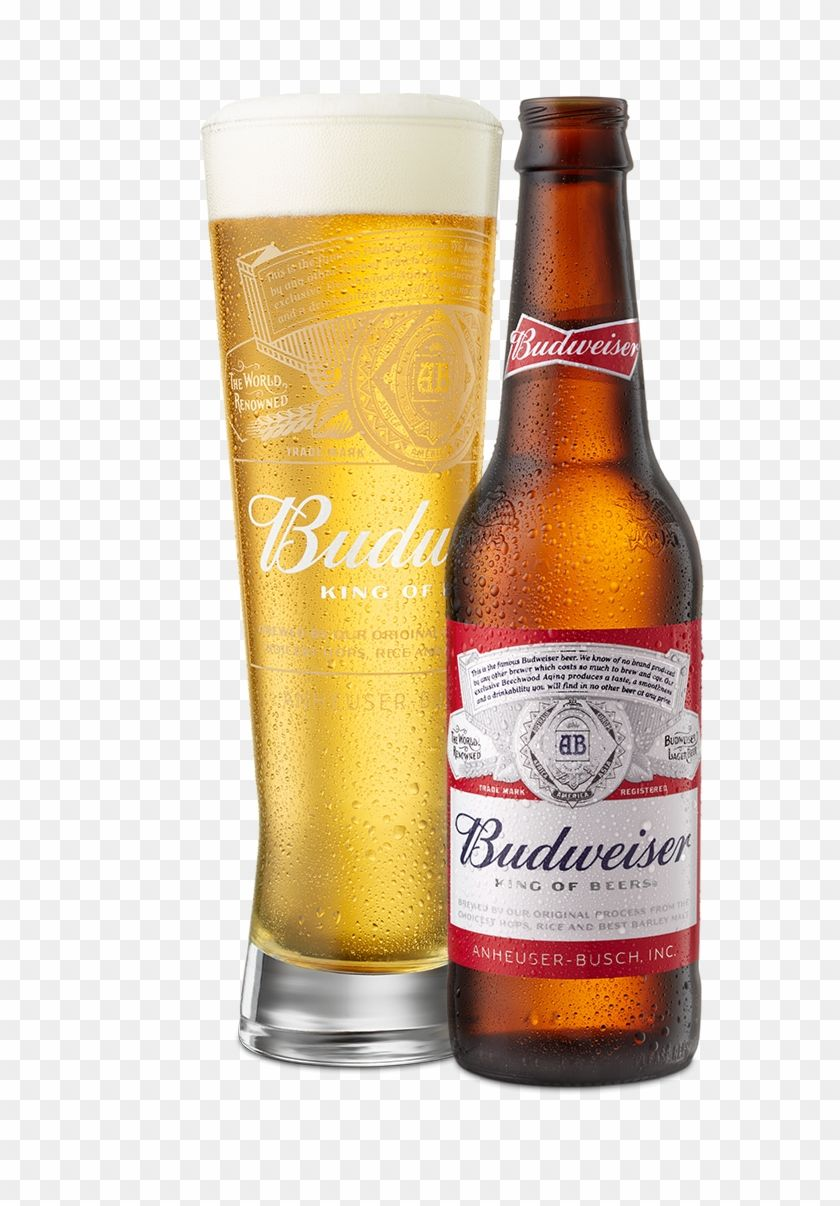 Find Hd Beer Poured In Glass Next To Bottle Budweiser Hd Png Download To Search And Download More Free Transparent Png Images Budweiser Beer Bottle