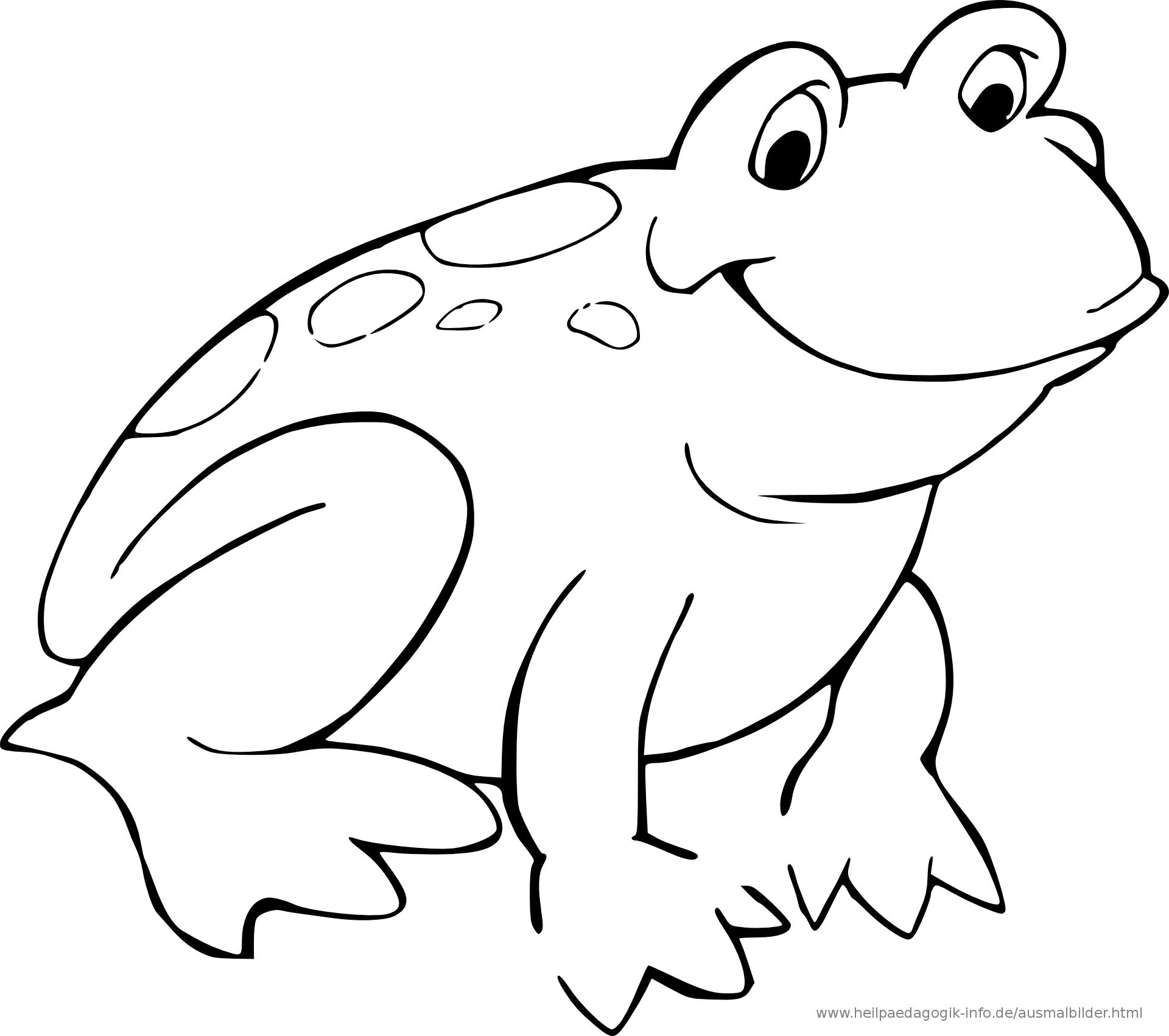 Frosch Malvorlage Kostenlos - tiffanylovesbooks
