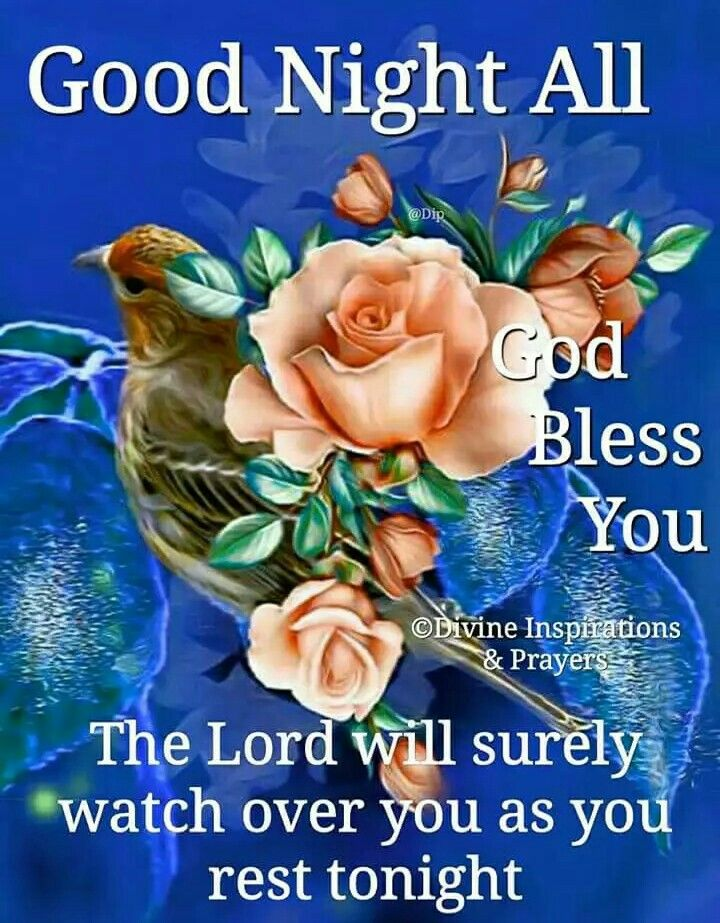 Good night sister and all  Have a peaceful sleep  God bless