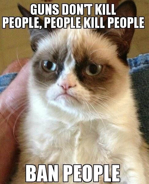 Tard Cat on Guns and stupid people