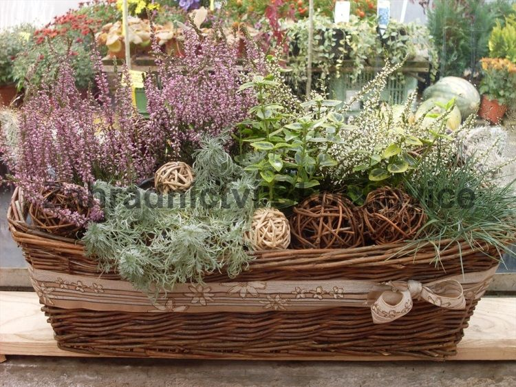 Pin By Dorota Napierala On Podzimni Dekorace Outdoor Flower Planters Outdoor Flowers Flower Planters