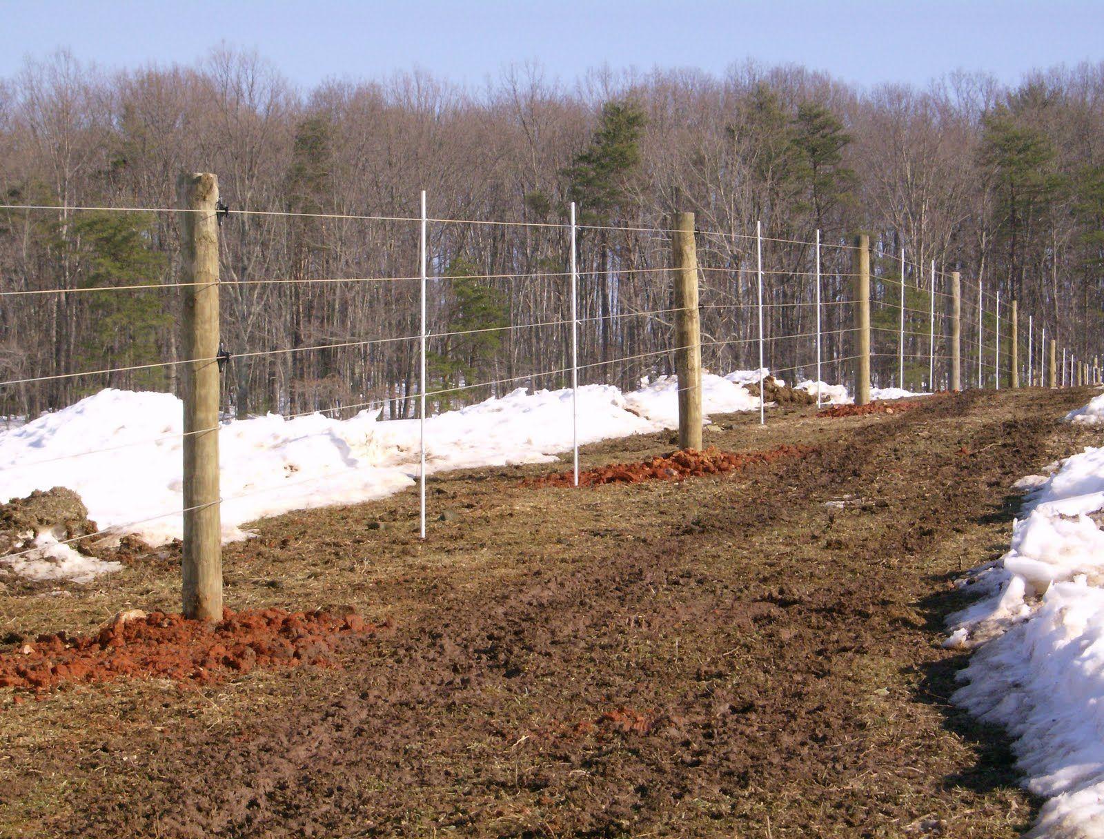 High tensile fence | Cows on the Prairie Farm | Pinterest | High ...