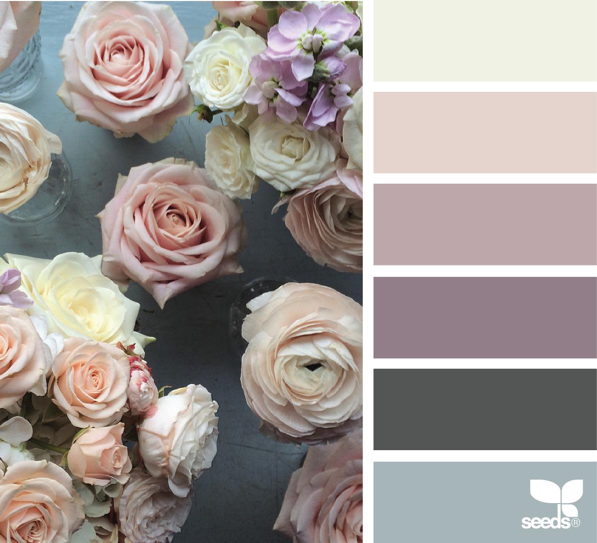 Warm Bedroom Color Schemes: Bedroom Colour Schemes Warm, Bedroom Color