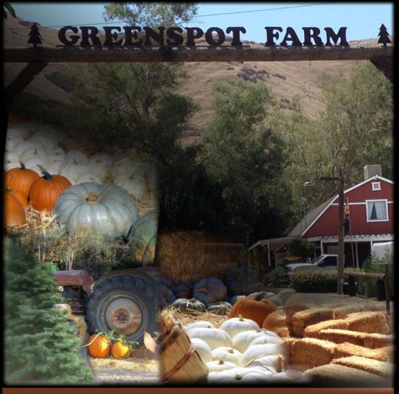 Greenspot Farms Mentone Ca Greenspot Farms Serving the