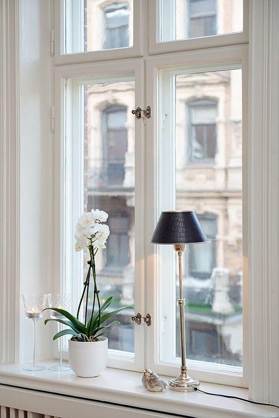 Olohuoneen ikkunalaudalle sopisi valkoinen orkidea (note to myself: käy katsomassa plantagenin valikoimat). ehkä myös lamppu orkidean kaveriksi?