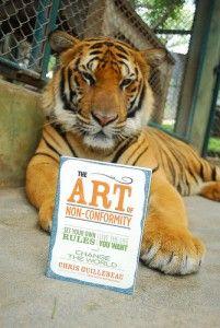 tiger-endorsement