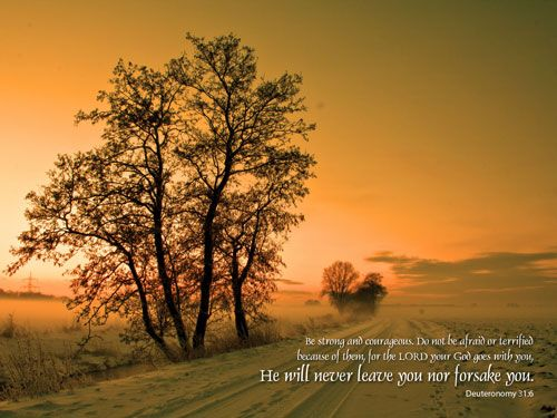 Lenten Special Free Inspirational Christian Nature Hd Desktop Wallpapers Tree Sunset Wallpaper Sunset Wallpaper Nature