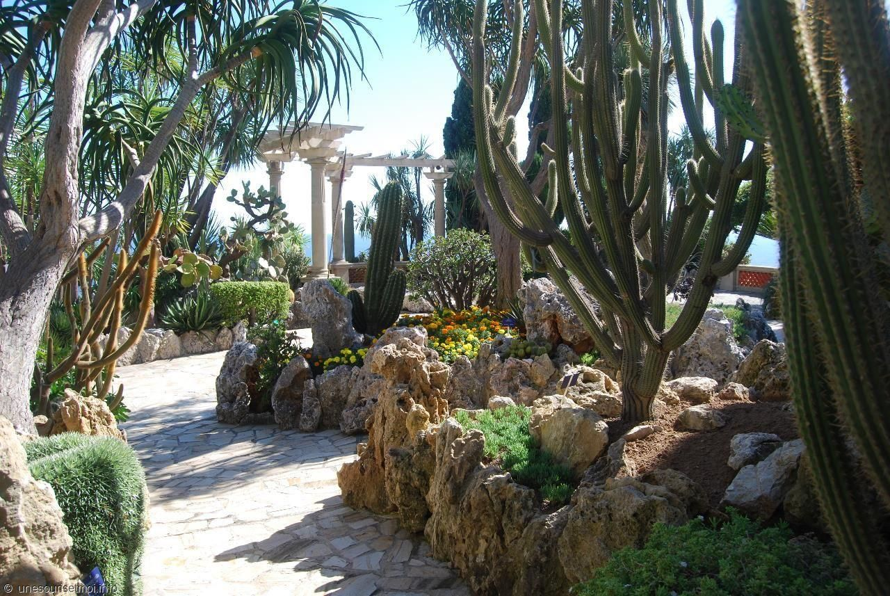 Cactus Monaco Jardin Exotique Been There Pinterest