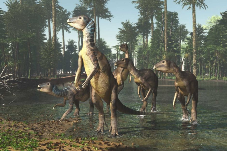 Weewarrasaurus Illustration Weewarrasauras Pobeni Is The First Dinosaur To Be Named In New South Wales In Almost A Prehistoric Animals Ancient Animals Fossils