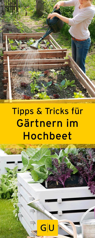 17 best images about garten / pflanzen on pinterest | gardens, Gartengerate ideen