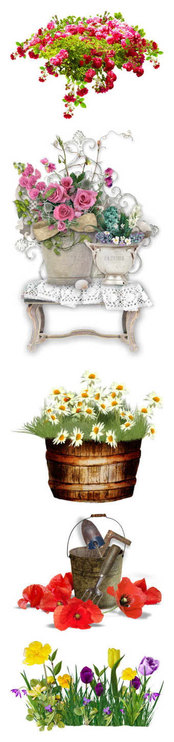 """""""flowers 3"""" by loves-elephants ❤ liked on Polyvore featuring flowers, plants, blooms, garden, plantas, filler, shabby chic, embellish, daisy and fleurs"""