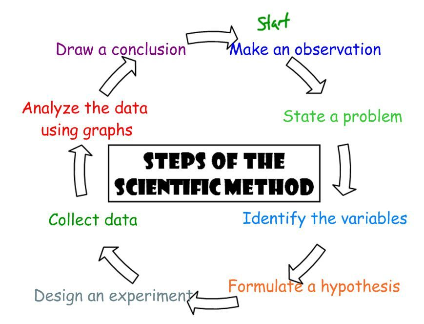 Image Result For Concept Map For Scientific Methods Scientific Method Concept Map Hypothesis
