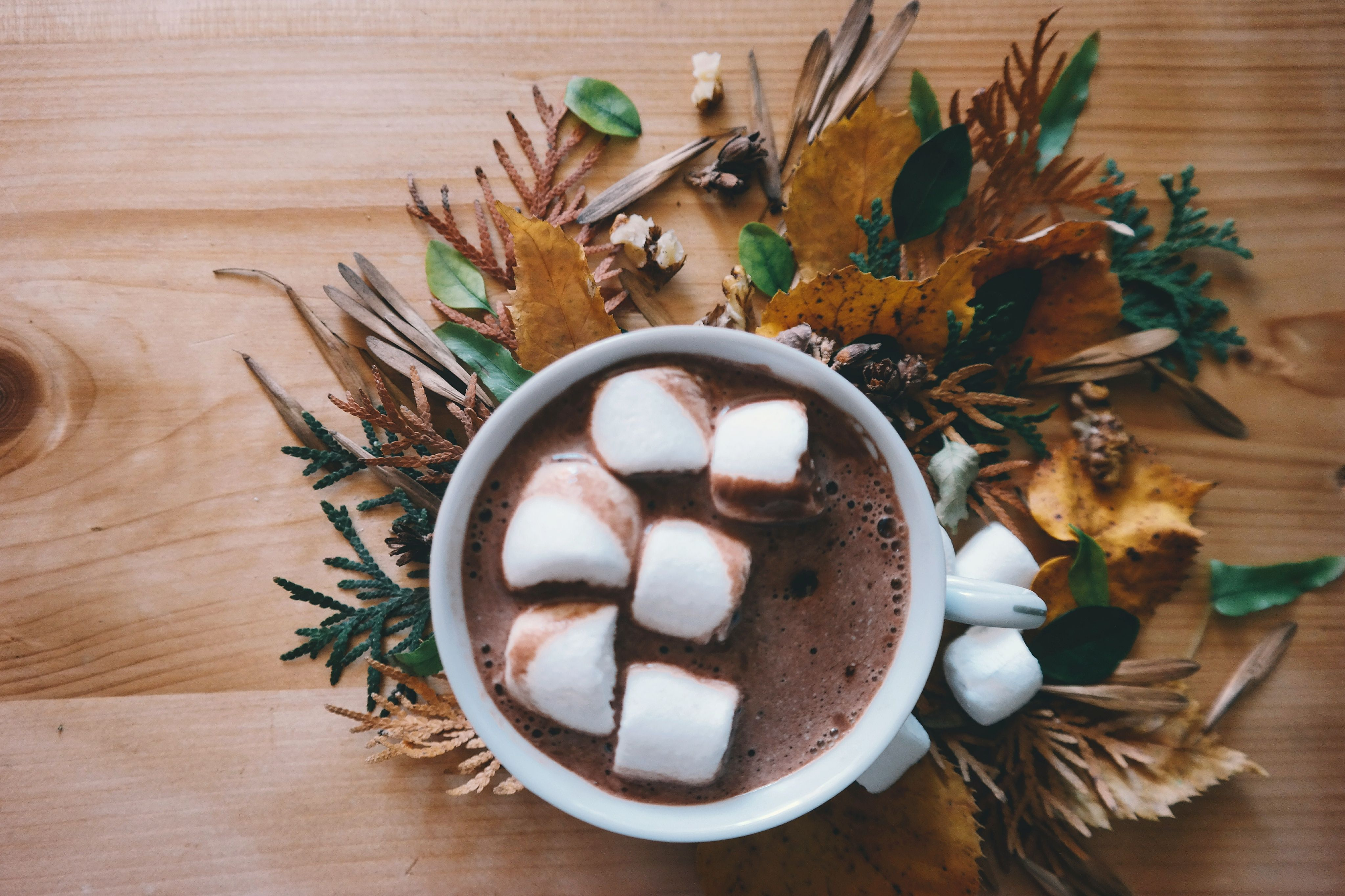 Healthy Marshmallows for Your Holiday Hot Chocolate #healthymarshmallows Homemade Marshmallows | Beekeeper's Naturals #healthymarshmallows