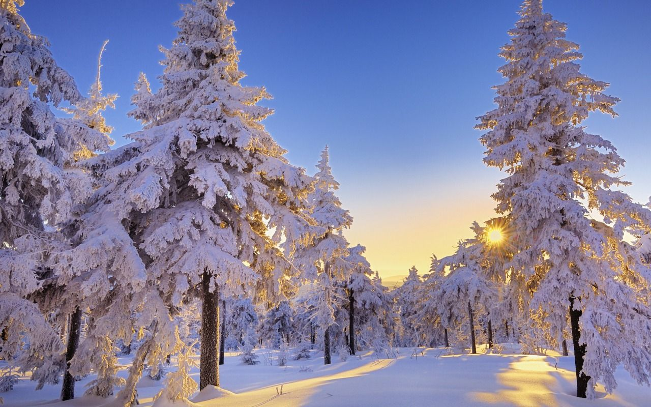 Free Desktop Wallpaper Background Winter Download Free Winter Hd Wallpapers For Desktop Design Winter Wallpaper Winter Wonderland Wallpaper Winter Pictures