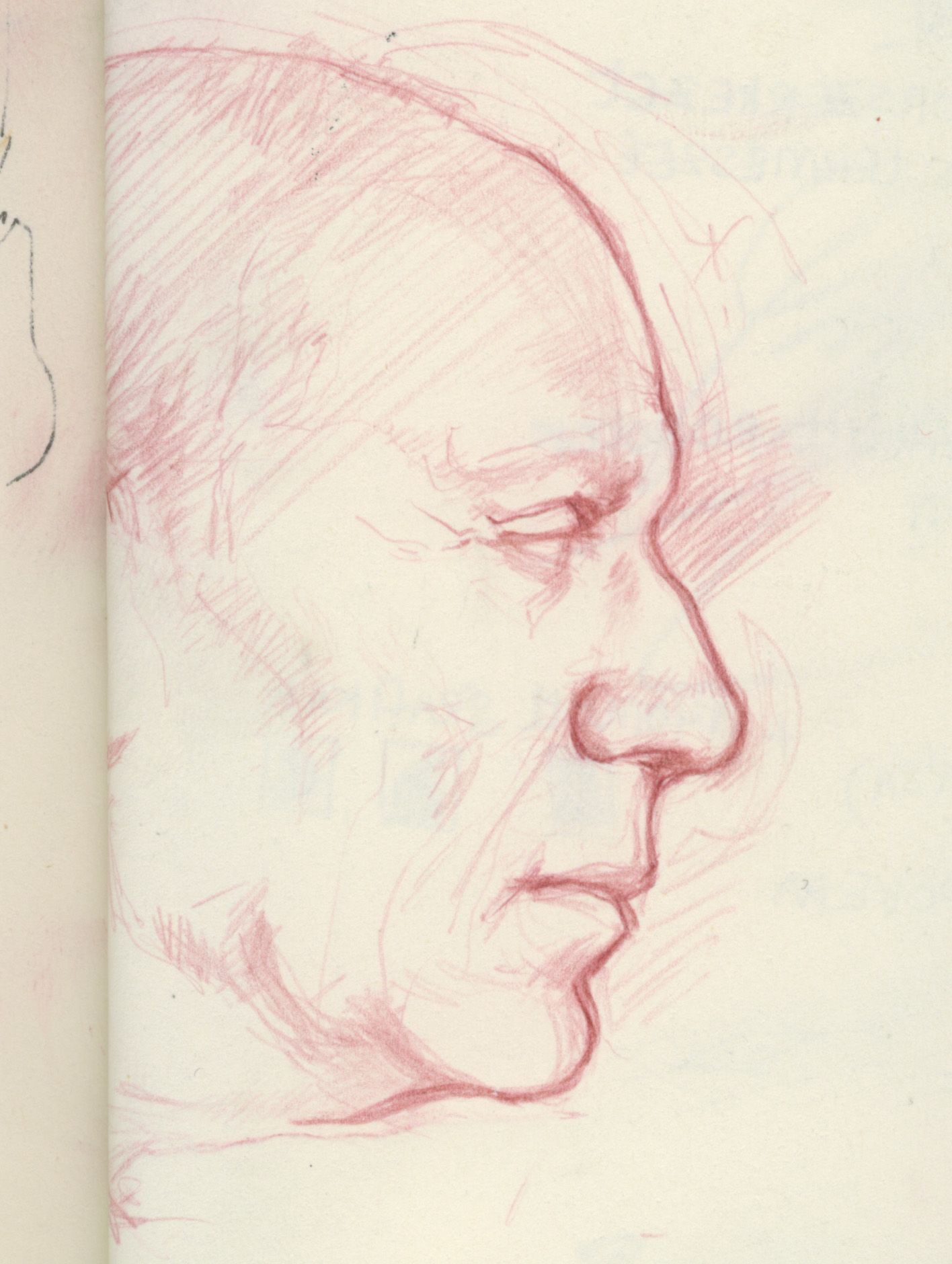 sketch portrait of Picasso - colored pencil on paper Virag ...