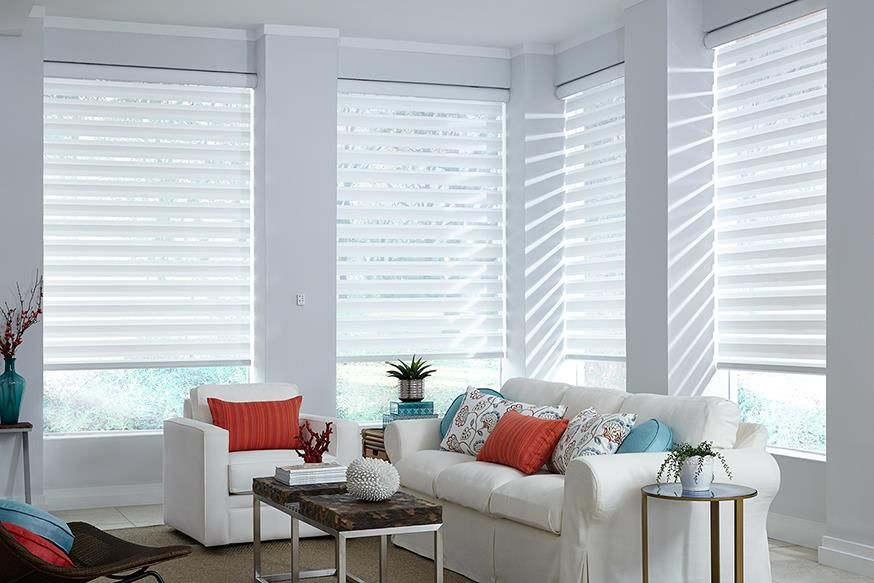Transitional Shades Window Treatments Living Room Contemporary