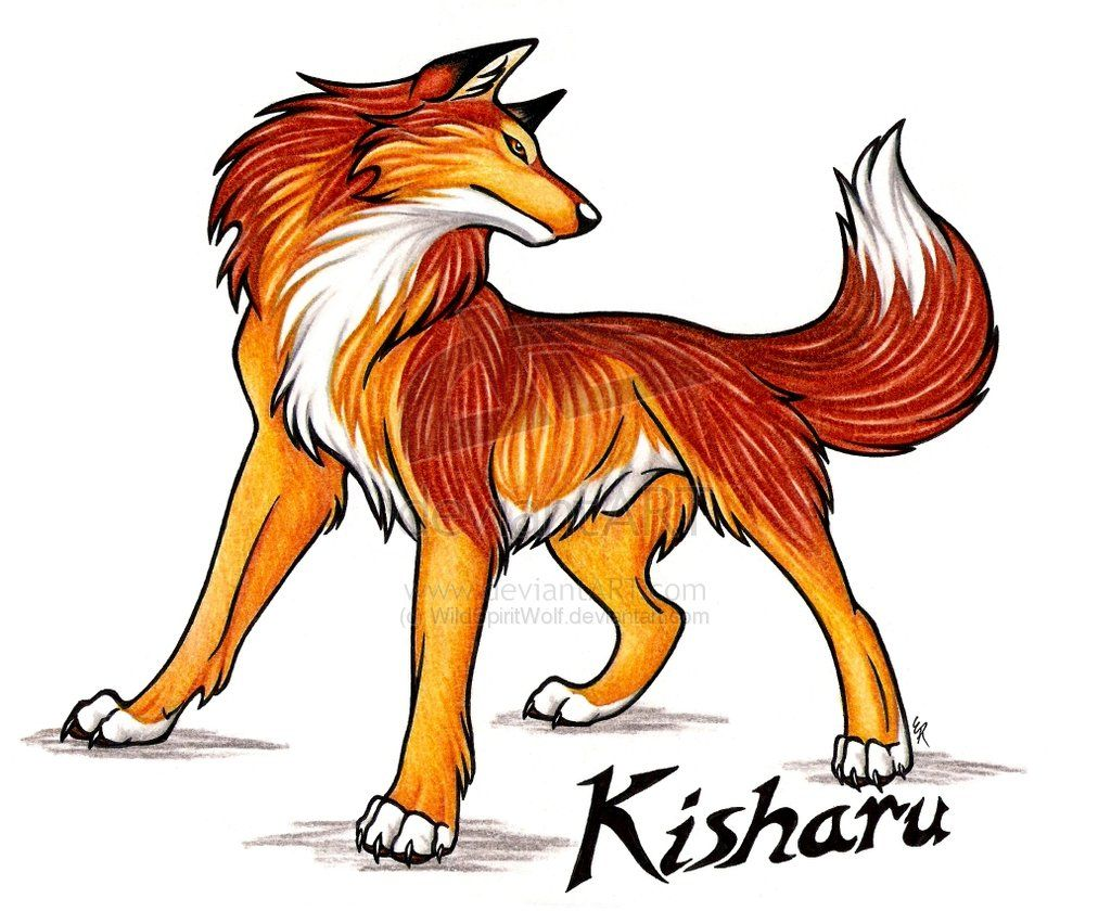 Orange Wolf Male Bing Images Rex And Crimson Wolf Anime Wolf