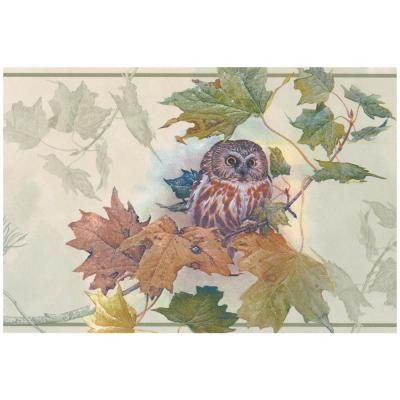 Norwall Owl Nature Prepasted Wallpaper Border, Multi