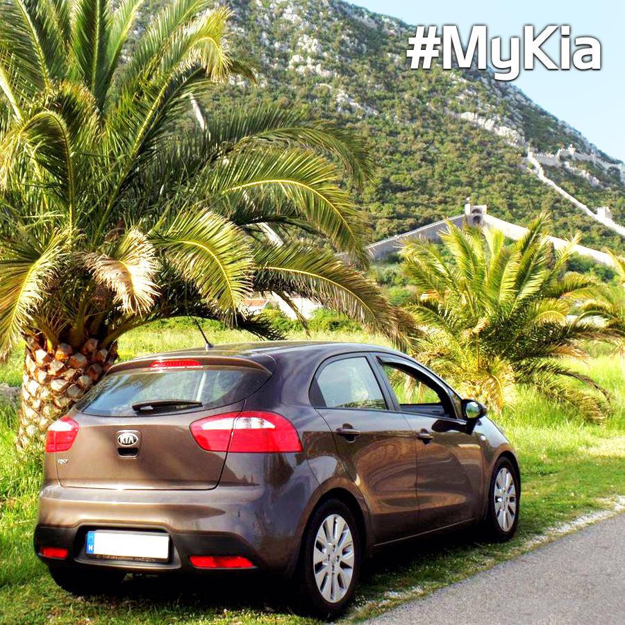 Kia Motors Global On Kia Rio Kia Motors Tropical