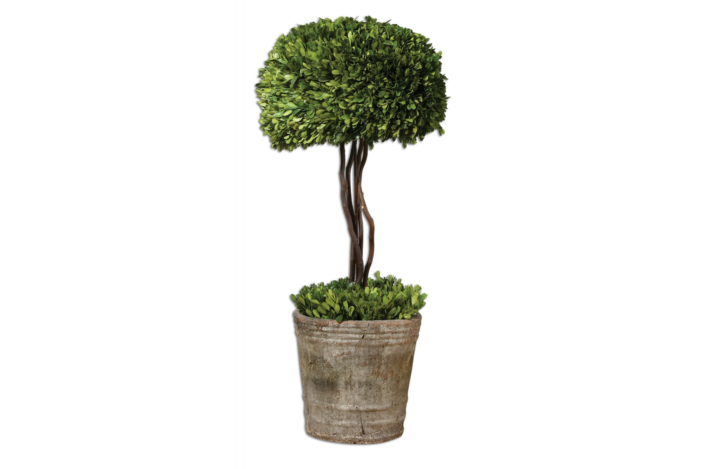 Uttermost Tree Topiary Preserved Boxwood is part of Boxwood tree, Preserved boxwood, Preserved topiary, Artificial plants, Topiary, Foliage arrangements -