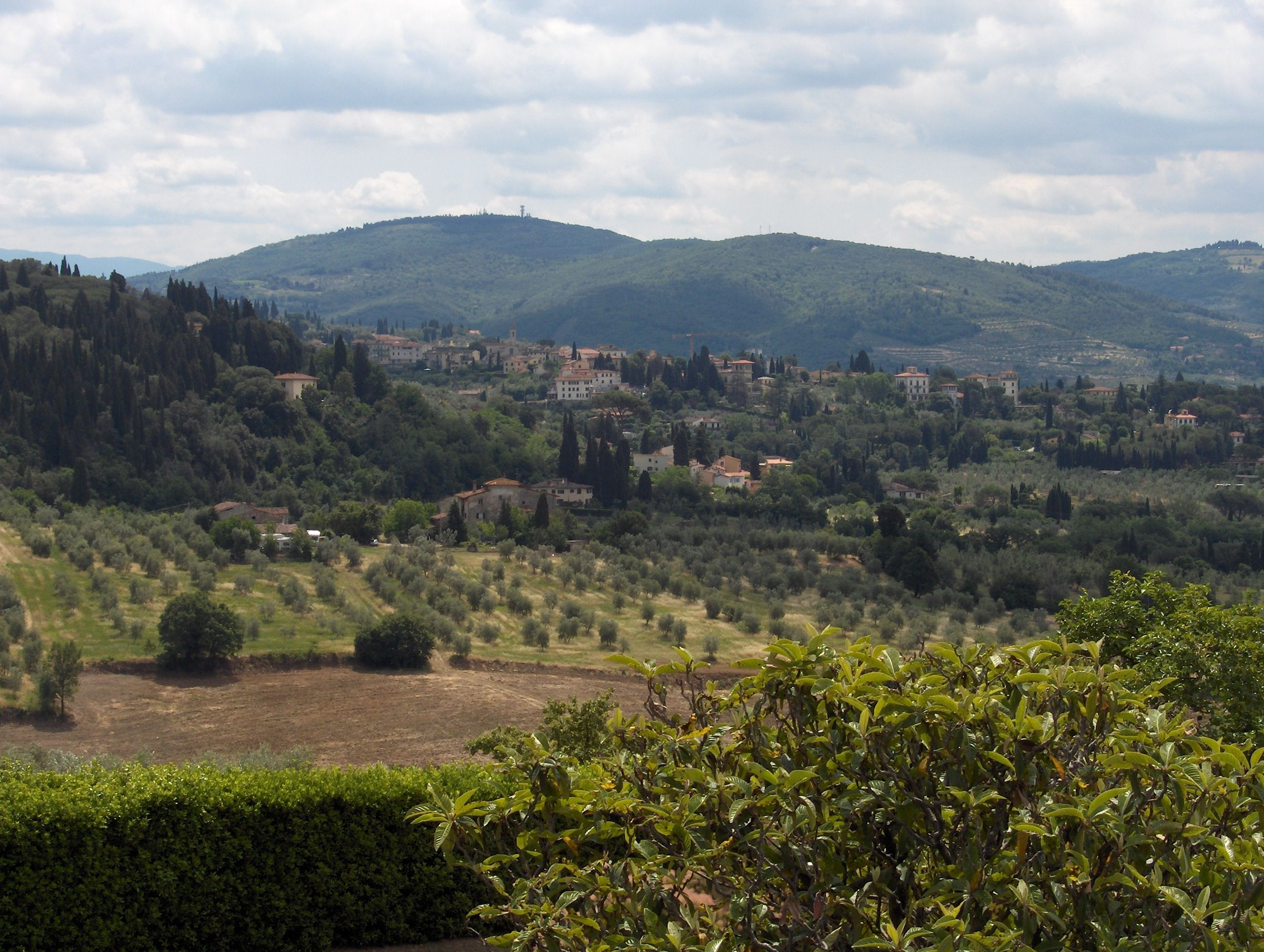 More Tuscany...love the grapevines!  Love the wine!