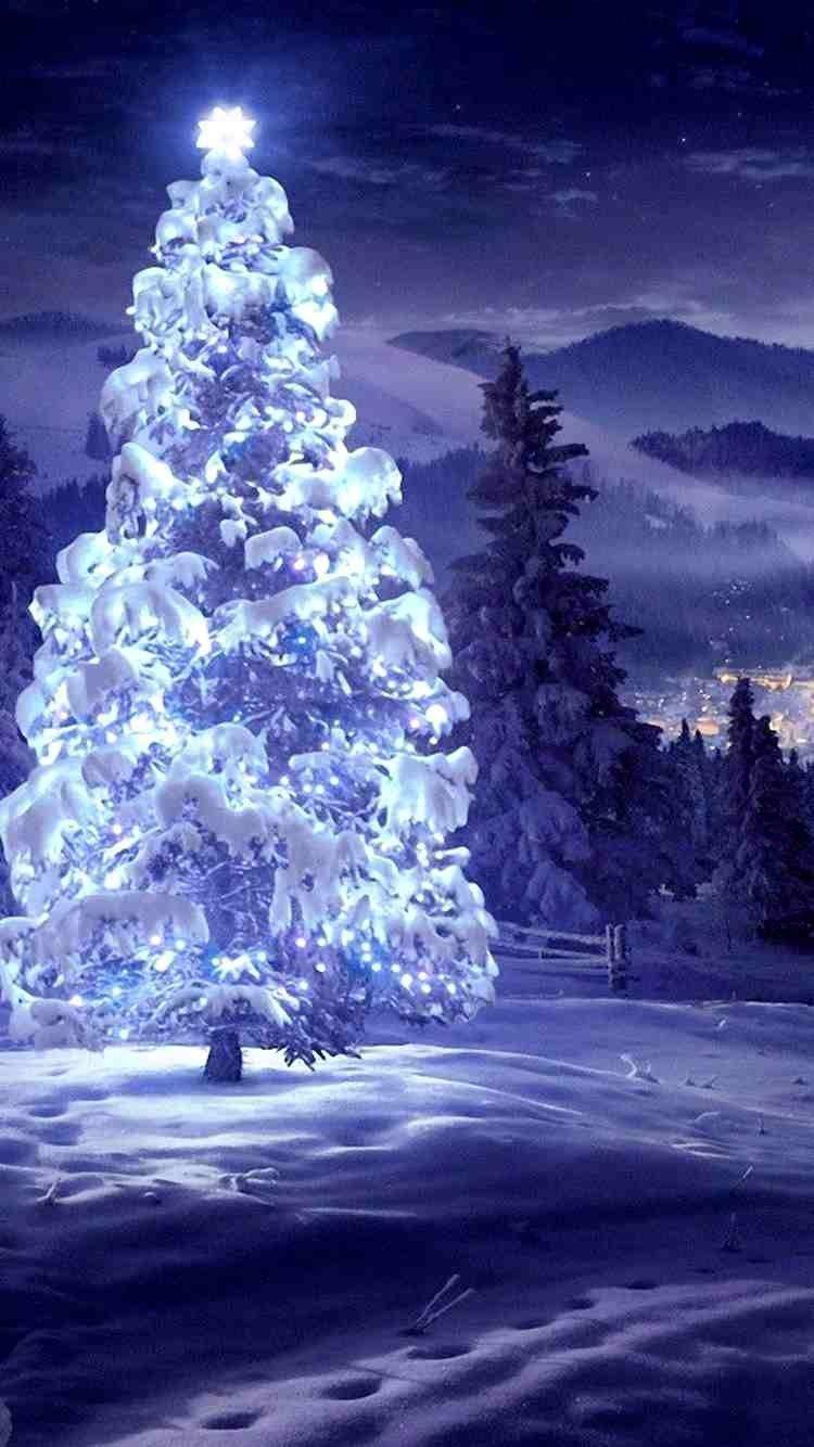 Lighting Star Christmas Tree Iphone 6 Wallpaper For 2014 Christmas Landscape Good Night Blessings Good Night Image Christmas Wallpaper Backgrounds