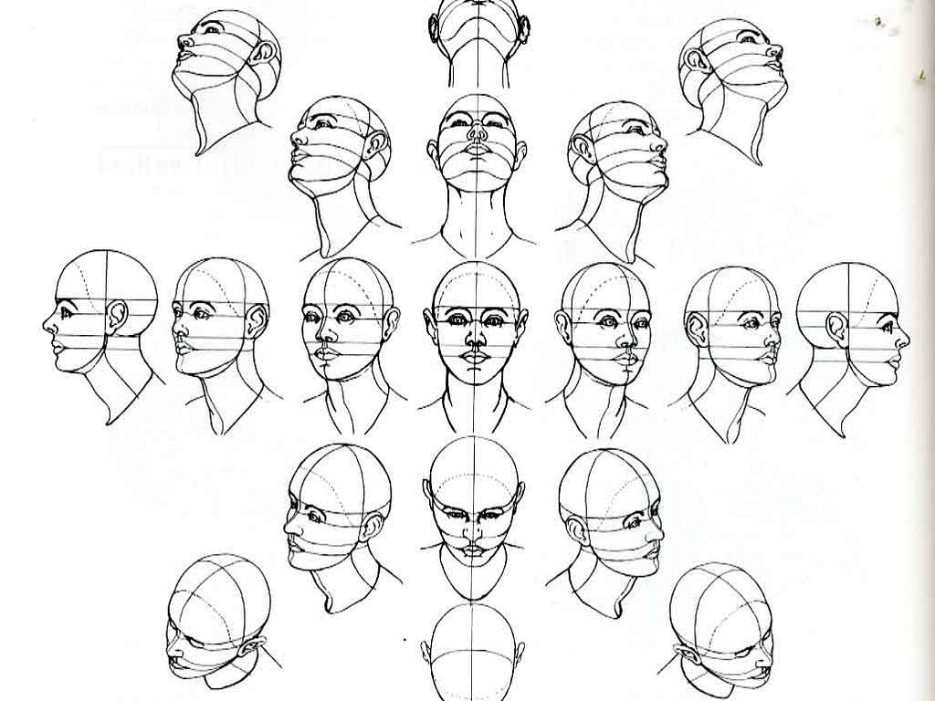 number of head drawing tutorials useful for when learning to draw