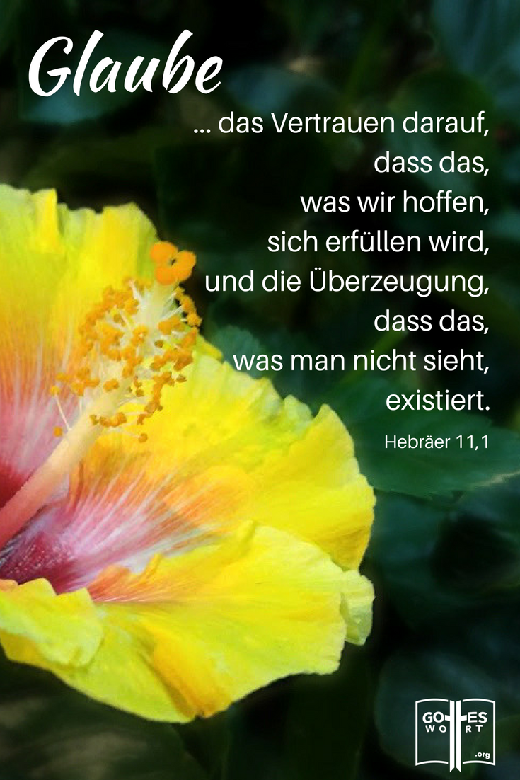 Sprüche Bibel Hoffnung
