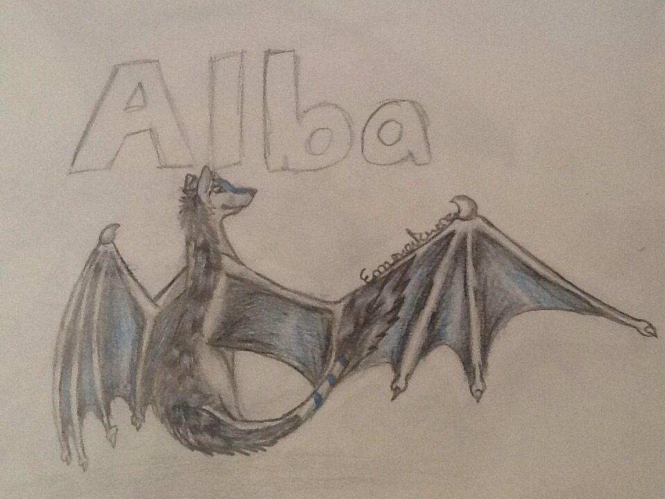 Alba the partially albino winged wolf