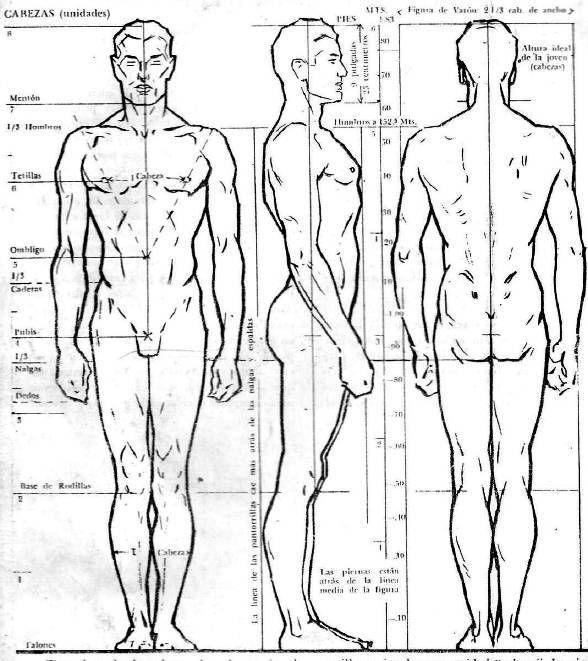 Aprender A Dibujar Personas Paso A Paso Y De Forma Profesional Con Esta Guia Totalmente Comp Figuras Humanas Proporciones Del Cuerpo Humano Dibujos De Personas