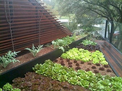 Roof Deck Veggie Garden Rooftop Garden Urban Modern Garden Backyard Landscaping