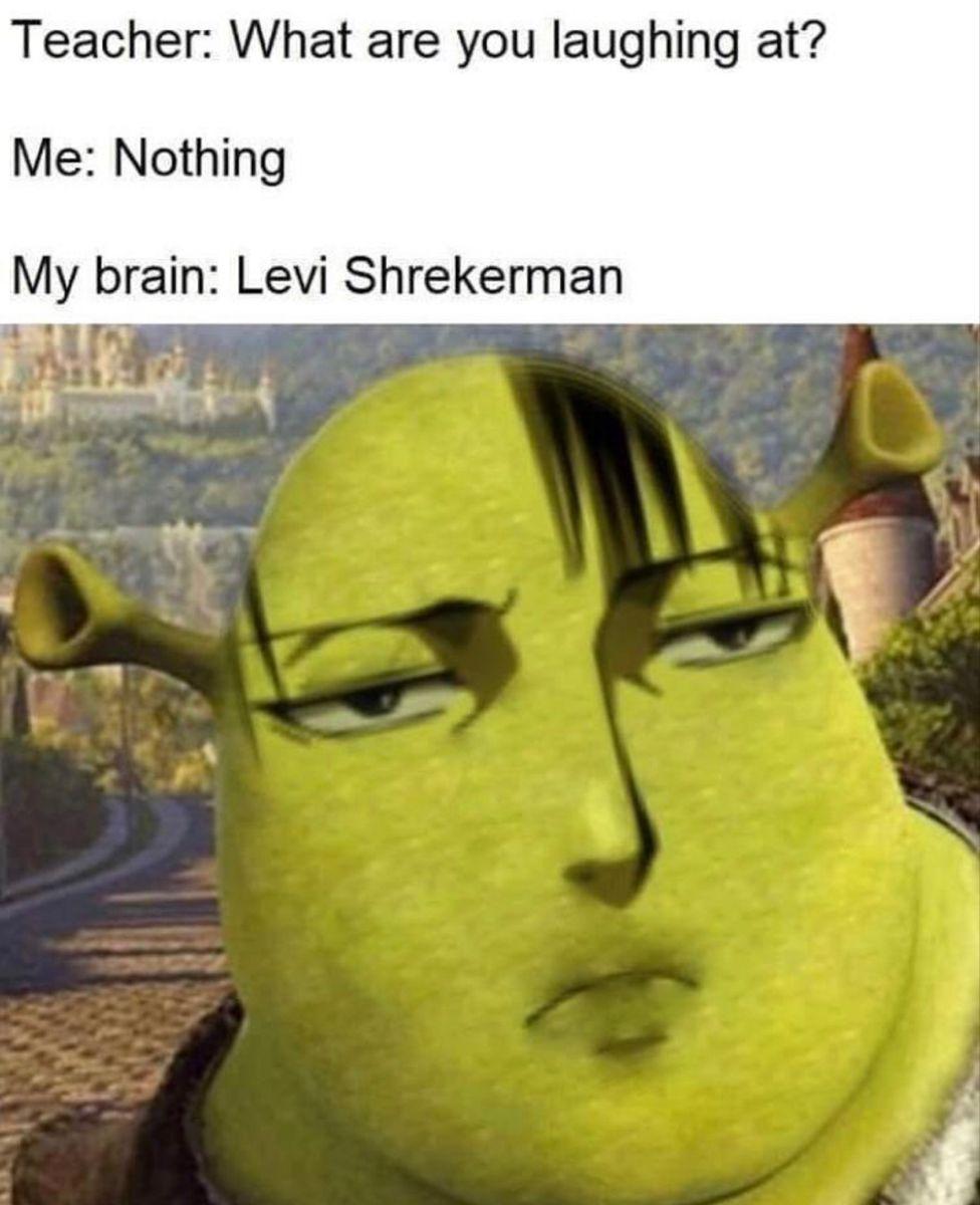 Levi Shrekman Is Hot Funny Anime Pics Levi Memes Attack On Titan Meme