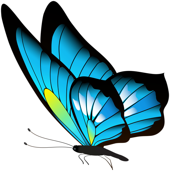 Butterfly Png Clip Art Butterfly Art Drawing Butterfly Art Painting Butterfly Painting