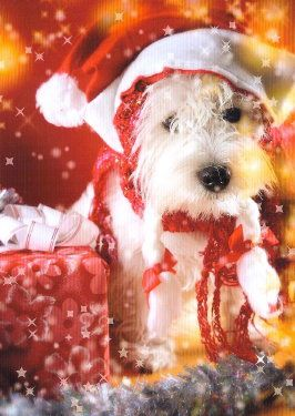 Merry Christmas Baby Westie Puppy Holiday Dogs Santa Claus Dog ...