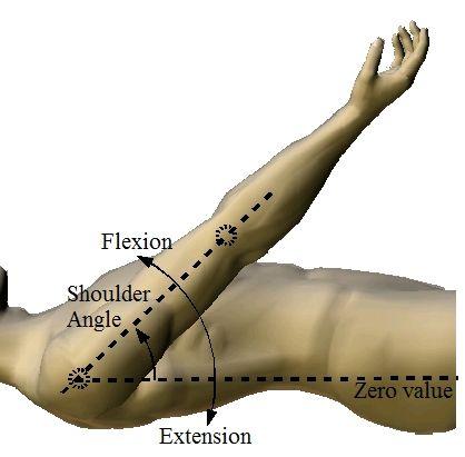 Shoulder Flexion & Extension | PT | Pinterest