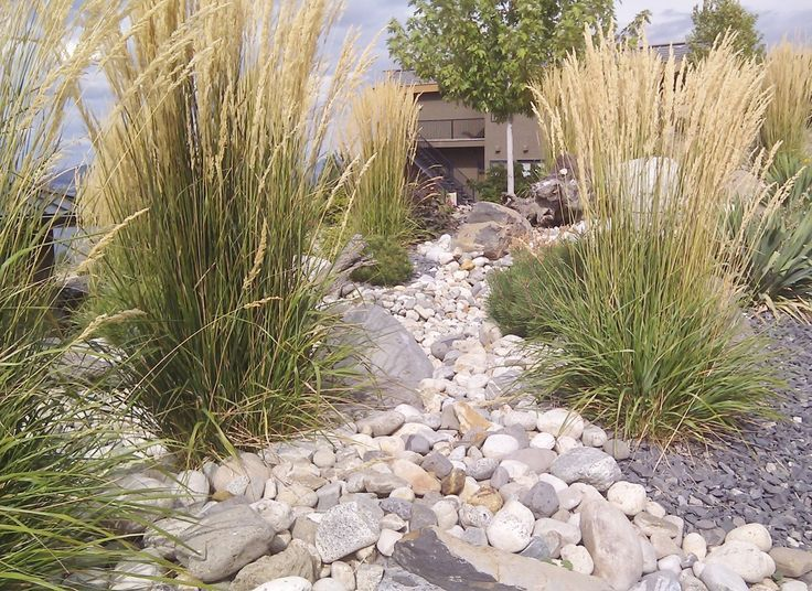 Landscaping: Xeriscape Landscaping Ideas Colorado | Large ... on Xeriscape Backyard Designs id=68764