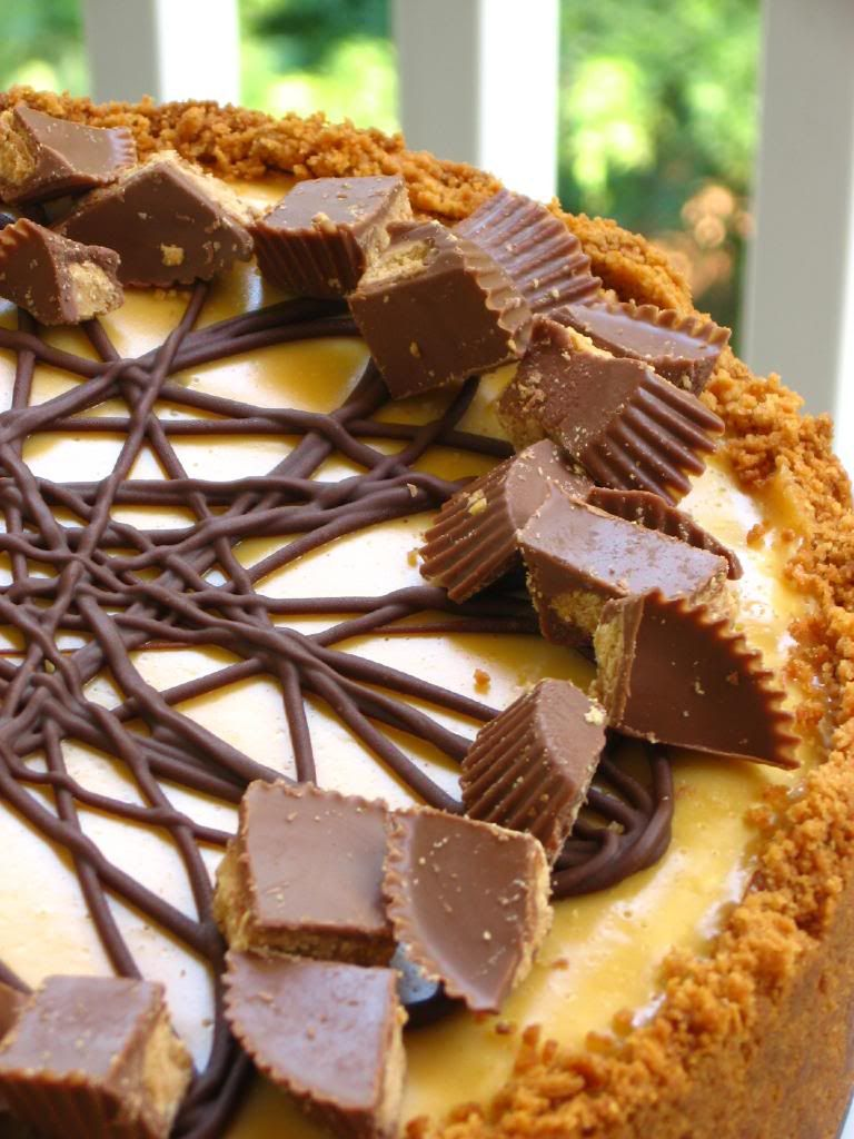 Chocolate Peanut Butter Bliss Cheesecake