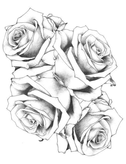 4 Roses Tattoos Google Search Rose Drawing Tattoo Flower Tattoo Drawings Rose Tattoo Design