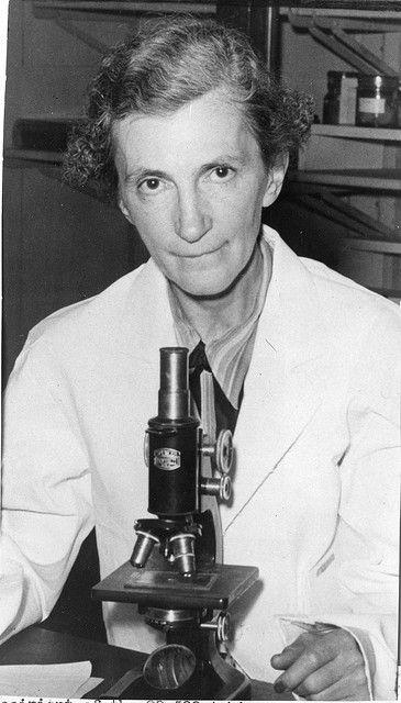 Elizabeth Caroline Crosby (1888-1983), sitting in lab with microscope by Smithsonian Institution, via Flickr