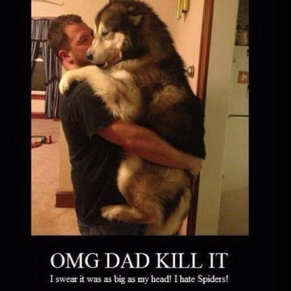 hahaha!  So my son, most of my technicians (Kristina and MEGAN!) and probably my dog!
