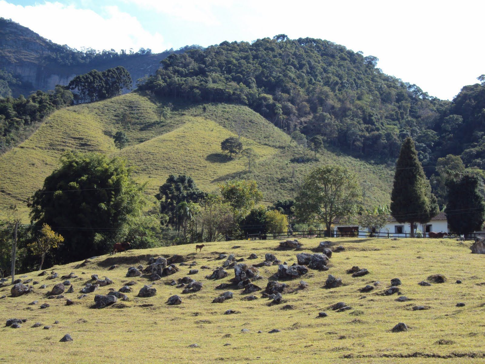 Fazenda 02 Com Imagens Paisagem Rural Fotos De Paisagem