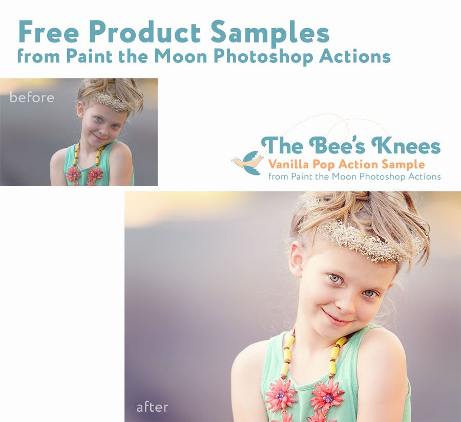 Free Photoshop Actions at Brusheezy