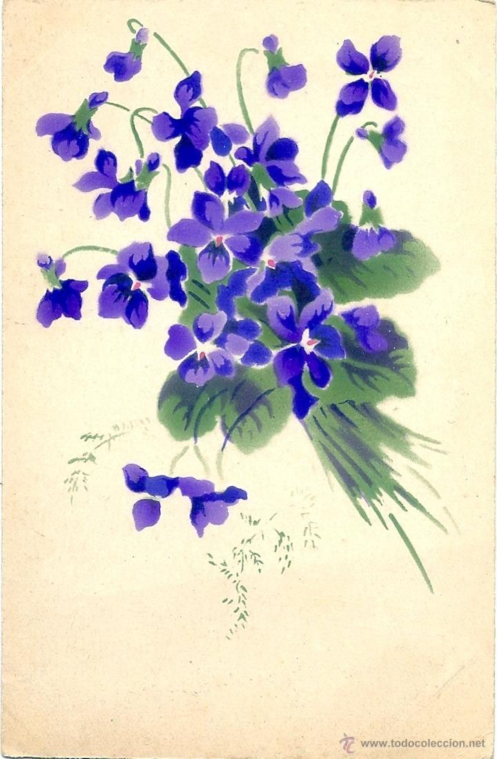 Ramo De Violetas Dibujo Buscar Con Google Violetas Aquarela