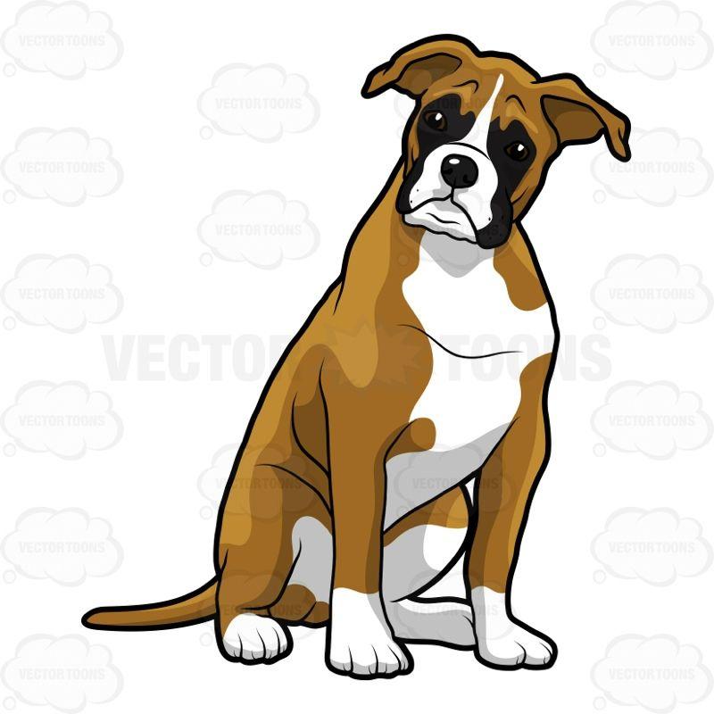 boxer cartoon dog google search les boxers une grande histoire rh pinterest com boxer dog cartoon image boxer dog cartoon