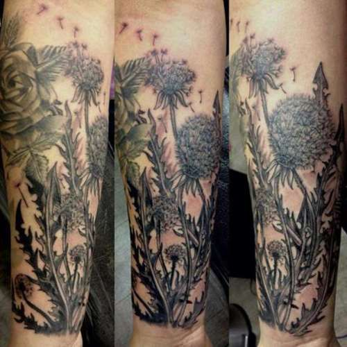 23 Scottish Tattoo Designs Ideas: Scottish Thistle Tattoo - Tattoo Shortlist