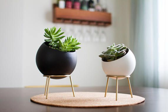 Planter with Brass Stand - GLOBE - Cactus and Succulent Planter Globe Planters - Spherical Succulent Pots with Brass Stand - GLOBE - Cactus and Succulent Planter Globe Planters - Spherical Succulent PotsGlobe Planters - Spherical Succulent Pots