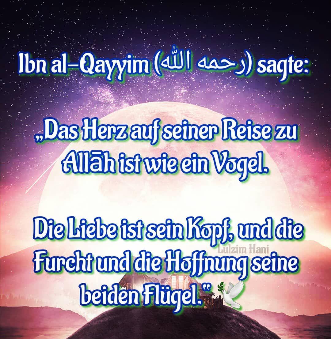 Islam Islamzitate Beten Wissen Gottergebene Muslime Turkei Mekka