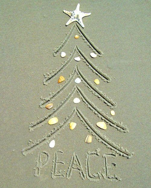Christmas On The Beach 28 Crazy Cute Photo Card Ideas