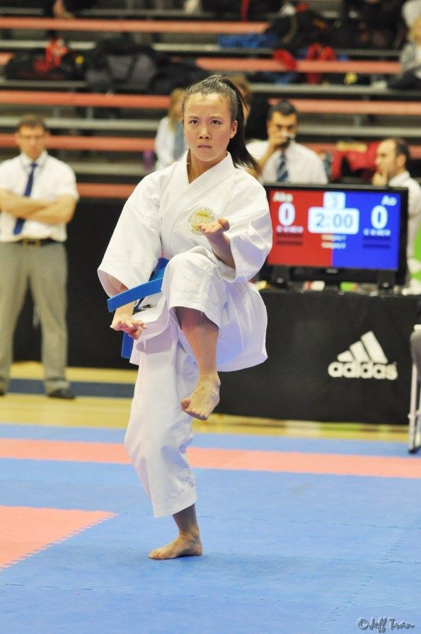 Results Adidas Karate Open Borås, Sweden 2013 | karate girl