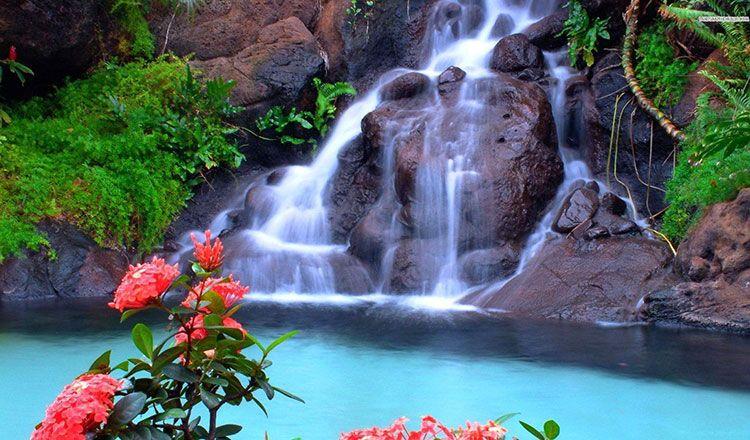 Waterfall Qigong Sivananda Ashram Yoga Retreat Bahamas Moving Meditation Waterfall Pictures Beautiful Waterfalls Waterfall Photo Beautiful nature wallpaper yoga